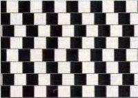 Illusion_ligne_parallle