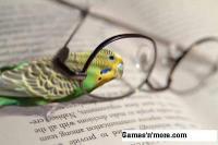 Reading_vision_eye
