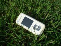 17_grass