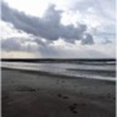 Horizon_mer_mouvant