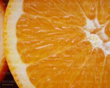 Orange_fruit_terre